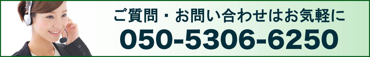 050-5306-6250